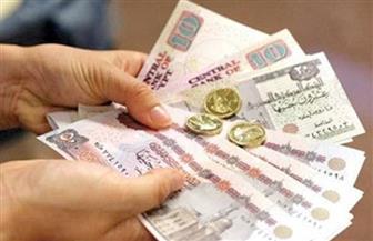 وزير المالية: زيادة المعاشات 15% جاءت لمواجهة الظروف الاقتصادية.. ووزيرة التضامن تطالب بصرف الزيادة في 1 يوليو