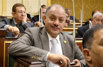 برلماني: ننتظر موافقة لجنة الزراعة على استصلاح 200 ألف فدان بقرية الزعفرانة