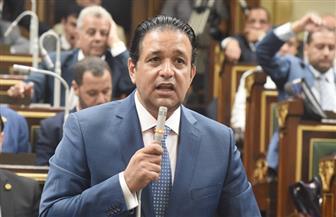 رئيس لجنة حقوق الإنسان بالبرلمان: تحريك شكوى دولية ضد هيومن رايتس