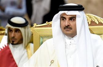 """صفي الدين دياب: لابد من إرجاء التدخل العسكري في حل الأزمة القطرية.. وتشديد العقوبات """" الأنسب"""""""