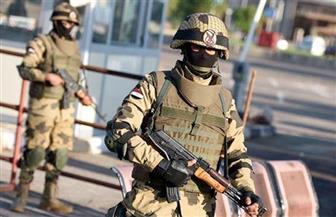 أدباء مصر يشيدون بالدور العظيم للجيش في الحفاظ على الأمن في سيناء