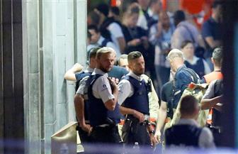 السلطات البلجيكية تطارد الديكة