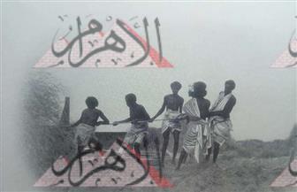 """""""ألبوم صور"""" عمره 113 سنة.. مصر تمد خط سكة حديد من الإسكندرية لممتلكاتها بإفريقيا"""