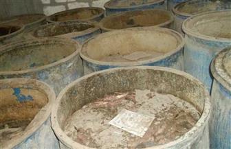 ضبط كمية من السردين وسمك الماكريل منتهي الصلاحية بكفر الشيخ