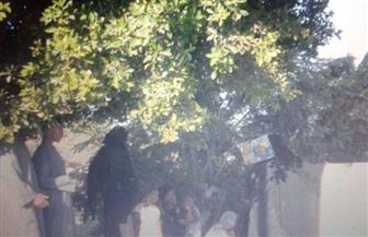 أهالي أسوان يحرصون على زيارة المقابر أول أيام العيد