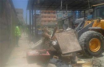 حملة لإزالة إشغالات شارع مستشفى العامرية غرب الإسكندرية | صور