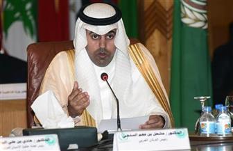 رئيس البرلمان العربي يشيد بقرار خادم الحرمين استضافة من أسر شهداء مصر