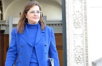 وزيرة التخطيط: الانتهاء من المشروعات المتوقفة أولوية في خطة 2018-2019