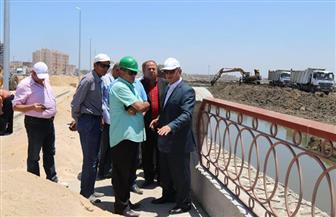 محافظ كفر الشيخ يتابع أعمال إنشاء وتجميل المرحلة الأولى من كورنيش بحيرة البرلس   فيديو