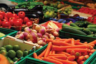 """""""الإسماعيلية"""" تصدر منتجات زراعية بقيمة 208 مليون دولار خلال الخمسة أشهر الماضية"""