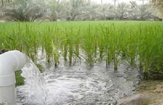 """تطوير قرية """"الخالدية"""" بالفيوم.. والأهالي يُطالبون بحل مشكلة مياه الري لديهم"""