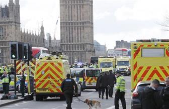 الخارجية الإسبانية تؤكد مقتل أحد مواطنيها في هجوم لندن الإرهابي