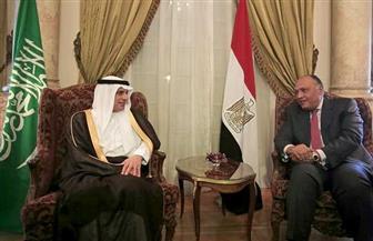 وزير الخارجية يبحث مع نظيره السعودي الوضع بالمنطقة وتطورات ملف سد النهضة