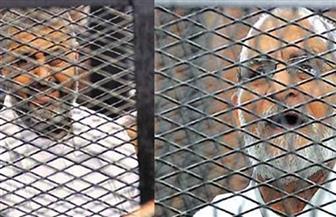 """تأجيل إعادة محاكمة بديع والشاطر وآخرين في """"أحداث الإرشاد"""" إلى جلسة 18 سبتمبر"""