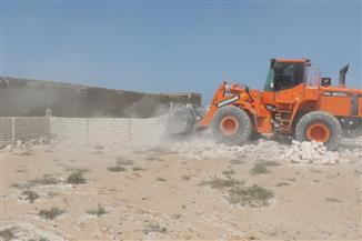 مجلس الوزراء يوافق على تخصيص قطعة أرض للهيئة العامة لمشروعات التعمير والتنمية الزراعية