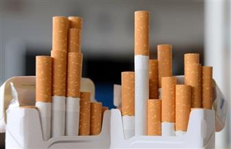 إعدام ٦٤ ألف علبة سجائر غير مطابقة للمواصفات في أسوان