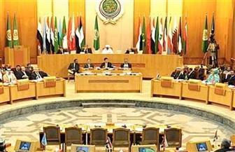 """""""مجلس وزراء الإعلام العرب"""": مصر ستبقى عصية على محاولات المساس بها"""