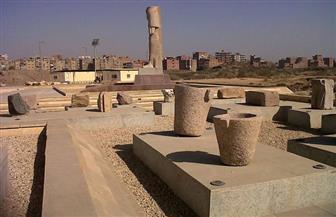 آثار تل بسطة بالشرقية تقلصت مساحتها من 4 آلاف فدان إلى 120 فدانًا وتعاني من ندرة السياح | صور