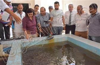 نائب وزير الزراعة تتفقد مشروع تطوير المزارع السمكية بالإسكندرية | صور