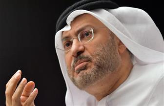 قرقاش: متجهون لقطيعة ستطول مع قطر