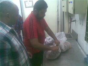 حملة بيطرية على مصنع لحوم بعزبة العرب فى غرب مدينة نصر