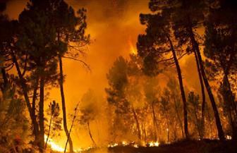 حريق غابات بولاية أوريجون بالغرب الأمريكي يجبر المئات على ترك منازلهم