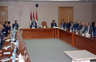 """""""قابيل"""" يستعرض مع 44 من سفراء مصر إستراتيجية الوزارة لدعم منظومة الصناعة والتجارة"""