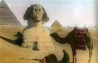 """مظلات """"هيرس راف"""" ومرواح النخيل.. كيف قاوم المصريون الحر قبل 112 سنة"""