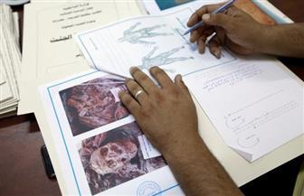جثث المئات من مقاتلي داعش في ليبيا تنتظر إعادتها لأوطانها