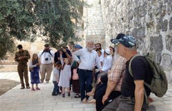 أكثر من 100 مستوطن يهودي يقتحمون منزل عائلة فلسطينية متنازع عليه بالضفة الغربية