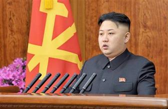 بيونج يانج تطالب مجلس الأمن بمناقشة عاجلة للمناورات العسكرية بين أمريكا وكوريا الجنوبية