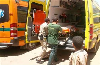 استشهاد أميني شرطة وإصابة رئيس مباحث مركز قويسنا في هجوم مسلح