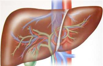 """في ذكرى اليوم العالمي للالتهاب الكبدي.. مؤتمر للتوعية بالمرض.. وتوقعات بخلو مصر من فيروس """"سي"""" بحلول 2030"""