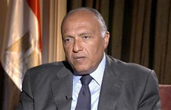 وزير الخارجية يلتقي نظيره البحريني على هامش اجتماع مجلس الجامعة العربية بشأن القدس