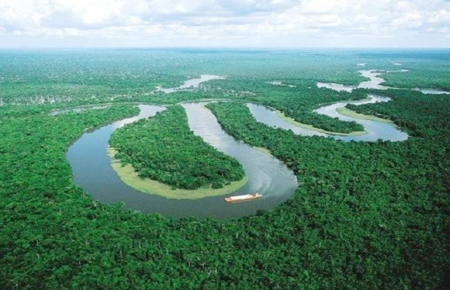 أكبر أنهار العالم/نهر الأمازون