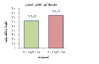 """""""المركزي للإحصاء"""": زيادة فى متوسط أجر العامل في القطاع العام"""