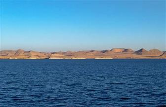 """""""الري"""" تنفي حدوث انخفاض شديد في منسوب بحيرة ناصر"""