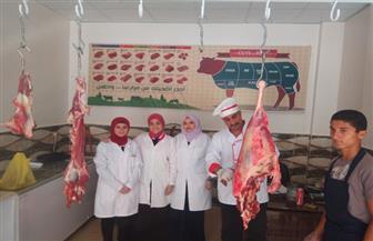 """3 طبيبات بيطريات يعملن بـ""""الجزارة"""" فى بنى سويف"""
