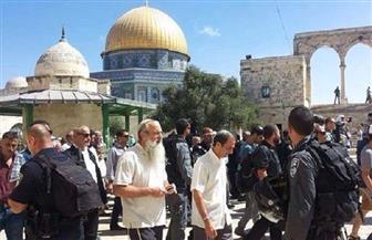 الحكومة الفلسطينية تندد باقتحام مستوطنين المسجد الأقصى ورفع علم إسرائيل