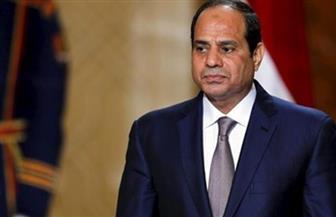 سفير جيبوتي: نقف في خندق واحد مع مصر من أجل القضاء على الإرهاب