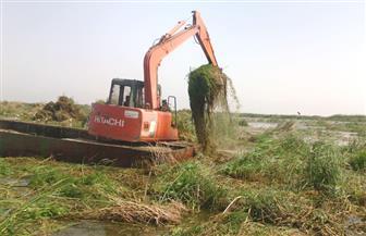 رئيس نقابة الصيد بدمياط: القوات المسلحة تساعد في أعمال تطهير وتنمية بحيرة المنزلة | فيديو