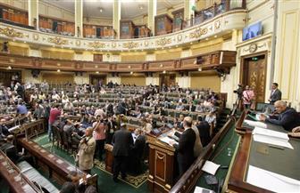 مجلس النواب يوافق على اتفاقية حماية الممتلكات الثقافية مع قبرص.. واتفاق ثقافي مع ألمانيا