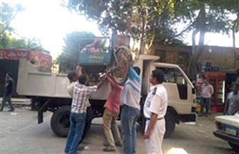 حي العجوزة يشن حملة لإزالة الإشغالات بمنطقة أرض اللواء