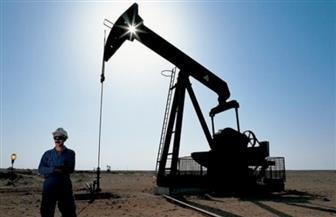 حجز دعوى وقف اتفاق مصر وقبرص بشأن التنقيب على الغاز لكتابة التقرير