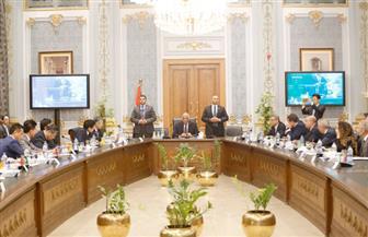 عبد العال لوفد النواب الياباني: نتطلع لزيادة مشروعات التعاون التنموي بين البلدين
