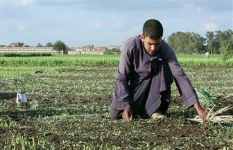 """خبير: الاعتماد على تحلية مياه البحر في الزراعة """"غير واقعي"""" وجنوب السودان """"مفتاح"""" زيادة الموارد المائية"""