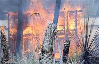 مالك مزرعة يتهم أبناء عمومته بحرقها بسبب خلافات الميراث في الفيوم