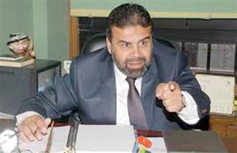 """الوليلي: تفعيل البورصة السلعية في مصر يحل المشكلات.. وقرار """"التموين"""" غير قابل للتطبيق"""
