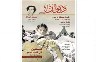 """""""ديوان الأهرام"""" تحتفى بذكرى ثورة يوليو"""