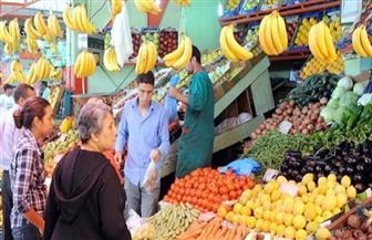 استقرار أسعار الخضراوات والفاكهة